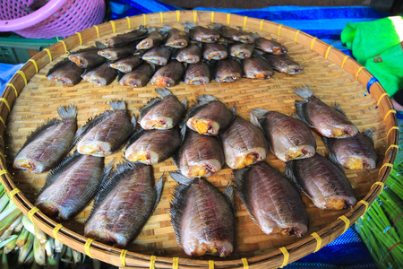 salted: dried salted damsel fish