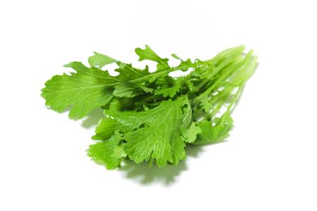 mustard leaf: Green leaf mustard