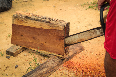 sawdust: Man sawing wood chainsaw Stock Photo