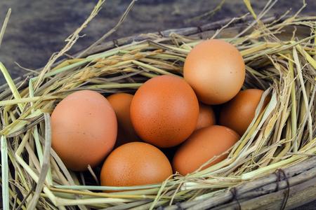 duck egg: Brown eggs in nest hen eggs on wooden background