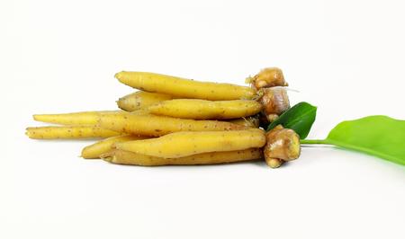 rotunda: finger root Ingredients for Thai Cuisine on white background Stock Photo