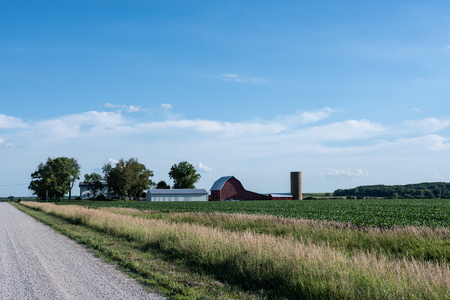 Traditional farmstead in the midwestern USA along a rural road with soybean fields Editorial