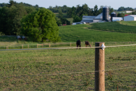 Electrified high tensile fence with horses and barns out of focus in the background