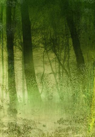 Dark Forest Texture Background