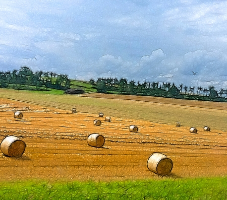 meteorological: Comics-style illustration of a summertime field with rolls of hay in Switzerland  region of Fribourg   Broye , referring to notions such as nature, agriculture, sunny weather and summer days Stock Photo