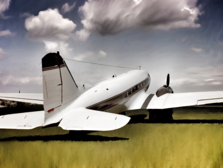 aeroengine: Painting-style illustration of an ancient transport aircraft (twin-engined DC-3) laying on a ground of grass