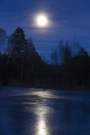 Luna y lago de hielo en Suecia Escandinavia Europa. Foto hermosa del paisaje y de la naturaleza en la noche. Bonitos tonos de color azul. Tarde fría con agua helada y reflejo. Al aire libre con árboles y cielo. Foto de archivo - 74185785