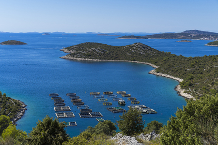 Beautiful nature and landscape photo of Croatia and Adriatic Sea. Nice, warm summer day with clear blue sky and lovely ocean. Calm, joyful and happy image. Fish colony in bay.