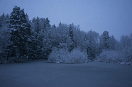 Beautiful nature and landscape photo of blue dusk evening in Katrineholm Sweden Scandinavia. Nice, cold winter at christmas time. Forest and lake with snow and ice. Calm, peaceful outdoors image.