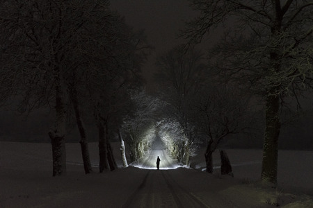 Man standing outdoors at night in tree alley shining with flashlight. Beautiful dark snowy winter night. Nice landscape and nature photo with frost and snow in trees. Calm, peaceful abstract picture.