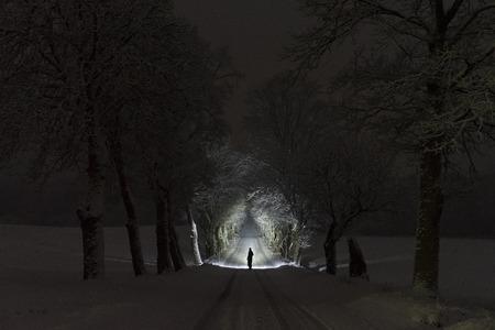 Homem que está ao ar livre na noite na aleia da árvore que brilha com lanterna elétrica. Noite de inverno nevado escuro lindo. Foto agradável da paisagem e da natureza com geada e neve nas árvores. Imagem abstrata calma, pacífica. Foto de archivo