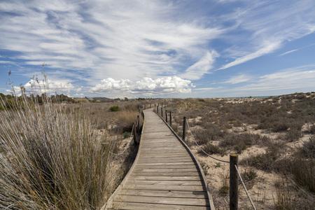 Natural protected area Els Muntanyans in Torredembarra,Costa Dorada,Catalonia,Spain.