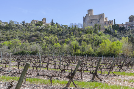 Landscape with vineyards in Penedes wine cava area and castle in Castellet,Catalonia,Spain. Editorial