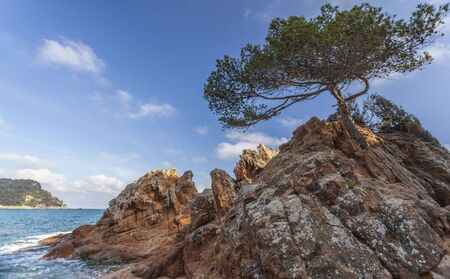 Fenals beach in Lloret  Mar, Costa Brava,  Catalonia, Spain. Archivio Fotografico