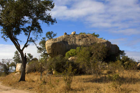 Big Rock bordered by tree and blue sky Stock Photo