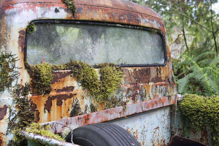 Rusty Old Truck with Moss