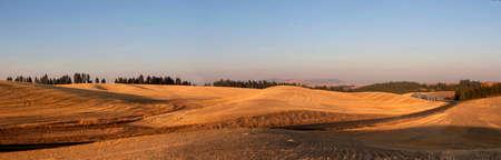 Palouse Panorama