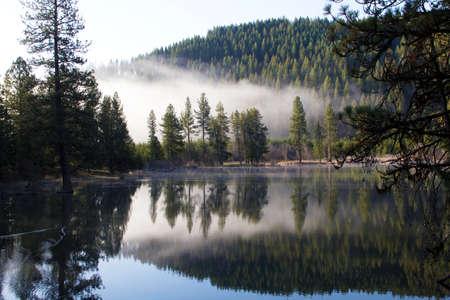 Morning Fog on Reservoir