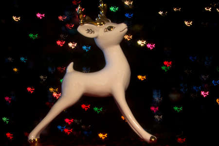 Reindeer with Christmas lights Stock Photo