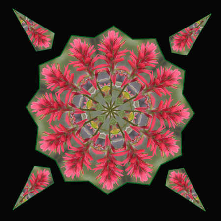 Giant Red Paintbrush Kaleidoscope