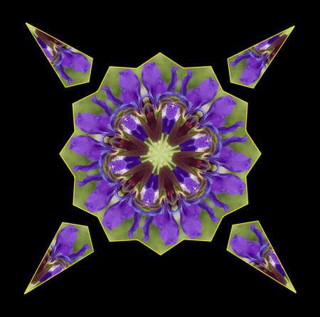 Purple Iris Petal Kaleidoscope Stock Photo