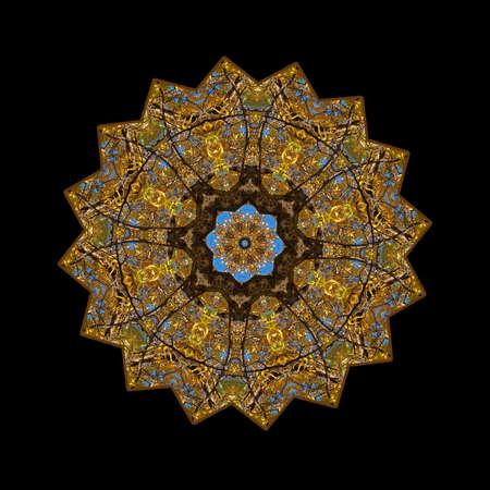 Kaleidoscope made from leaves of Walnut Tree