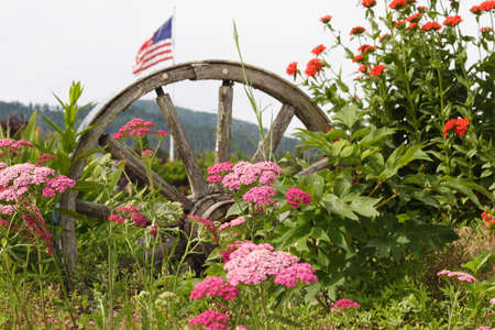 Wagon Wheel with flowers and flag Stock Photo