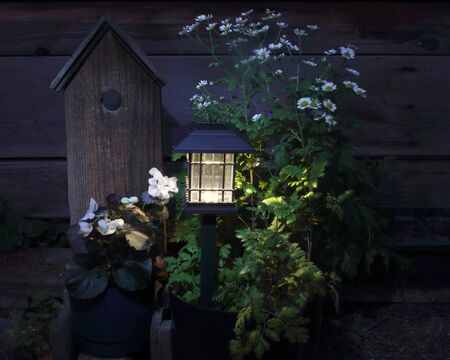 A solar lantern casts light on blossoms and a fake bird house