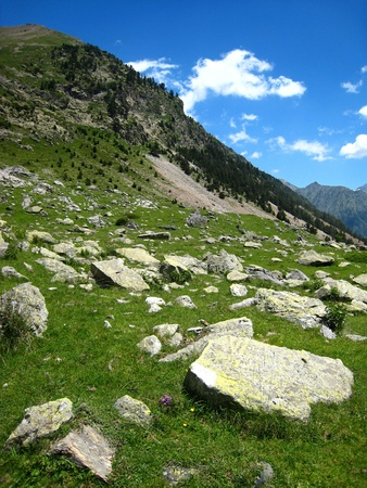 large rock: Big gray granite rocks on a meadow in the slope of a mountain