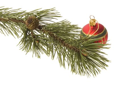 christmas tree. decoration. evergreen branch with ball photo