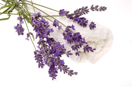 lavender bath items isolated on the white background Stock Photo - 3450262