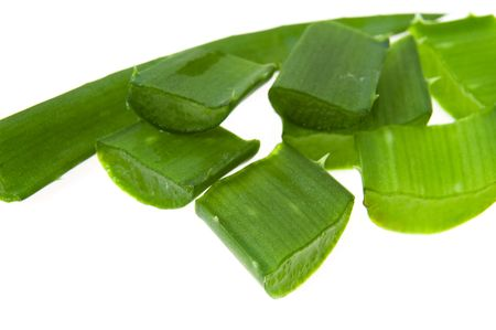 aloe vera Stock Photo - 4313927