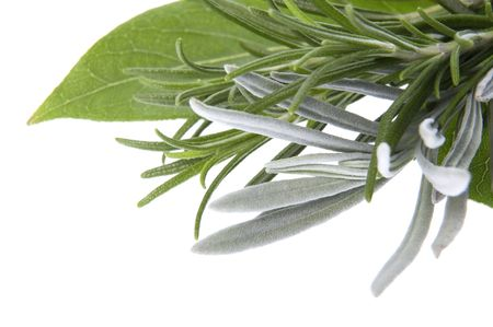 fresh herbs and spices. isolated on the white background photo