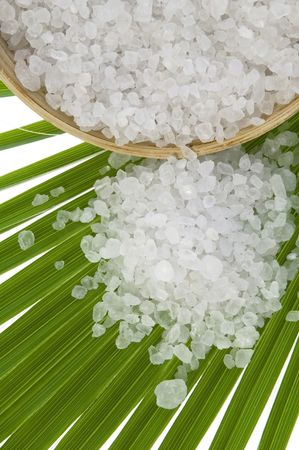 bath salt and the palm leaf photo