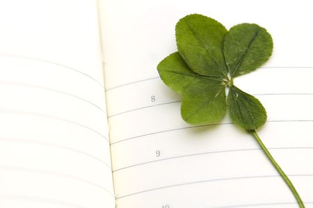 next day: Five Leaf Clover and New Day.