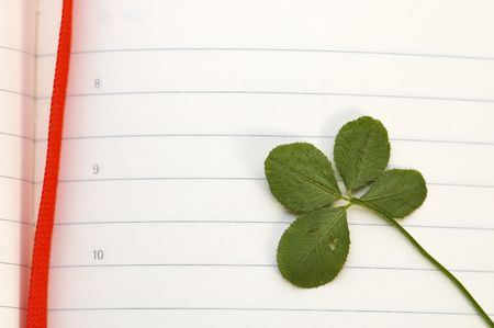 four leaved: Four Leaf Clover and New Day