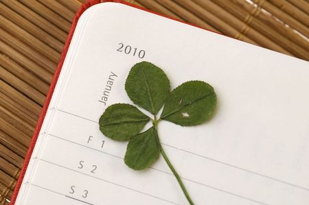 Four Leaf Clover  and New Year. January 2010. photo