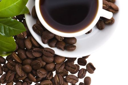 fresh coffee with coffee branch  Stock Photo