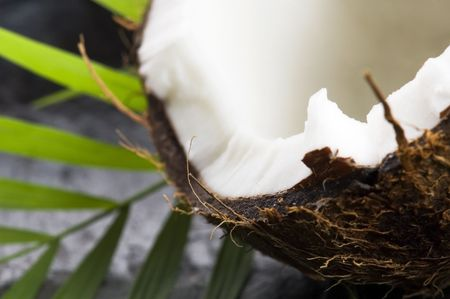 coconut and palm leaf. exotic scene Stock Photo - 6812236