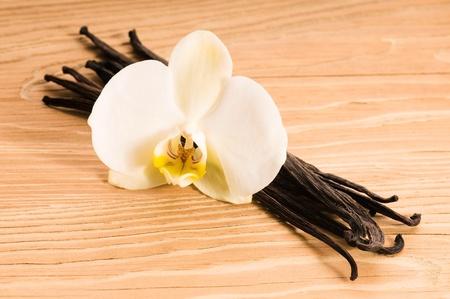 Vanilla pods and flower Stock Photo - 9583691