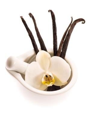 vanilla flower: Vanilla pods and flower Stock Photo