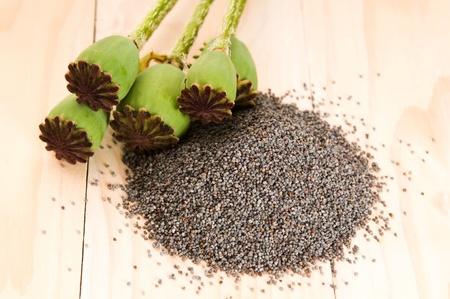 plant drug: Poppy seeds and poppy heads