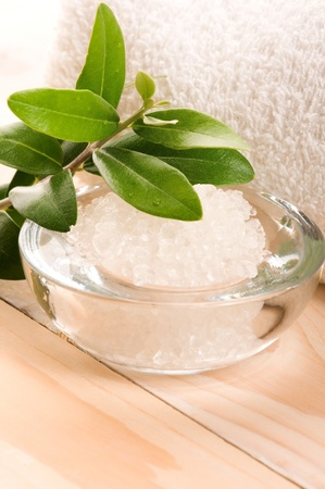 Sea Salt With Fresh Olive Branch. Spa And Wellness  photo