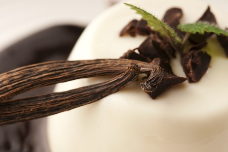 Panna Cotta with chocolate and vanilla beans photo