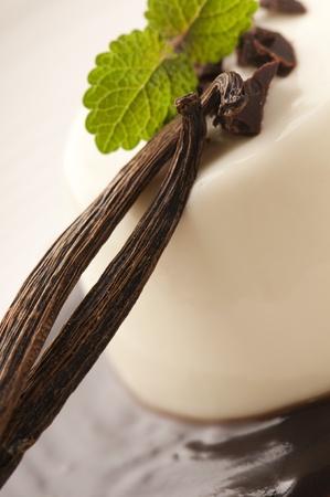 Panna Cotta mit Schokolade und Vanille Lizenzfreie Bilder