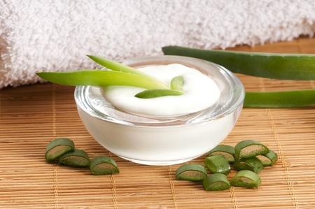 Aloe Vera - Blätter und Sahne getrennt auf weißem Hintergrund