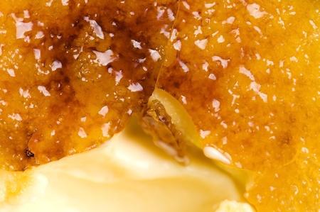 French dessert - cream brulee, burnt cream  photo