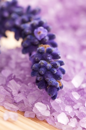 Lavender flowers and the bath salt - beauty treatment Stock Photo - 13538634