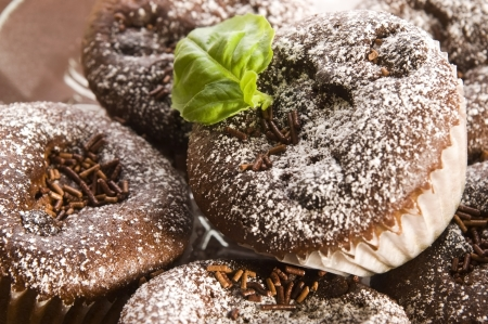 Homemade chocolate muffins Stock Photo - 14485683