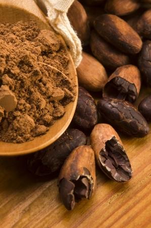 ココア: 天然木製テーブル上ココア (カカオ) 豆 写真素材